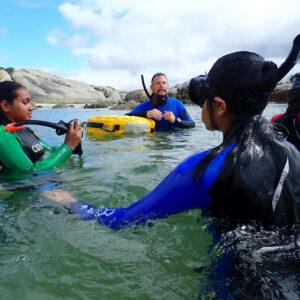 Ocean cleaning