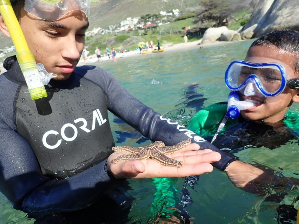 Coastal Environmental Education